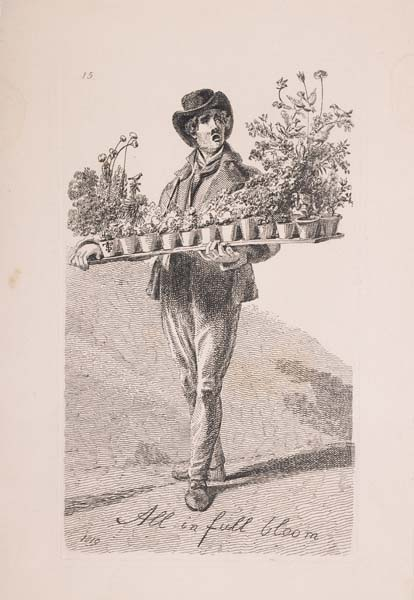 A man wearing a hat carries a long tray of potted plants.  Below him is written 'All in full bloom'.